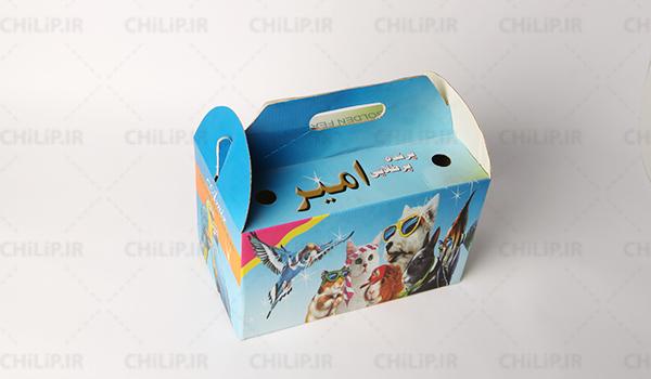 طراحی و ساخت جعبه حمل پرنده امیر