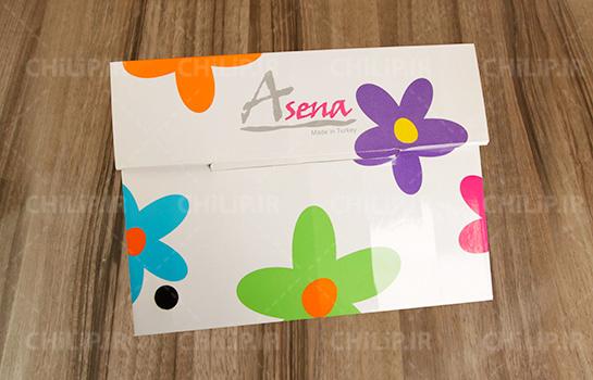 بسته بندی شرکت آسنا